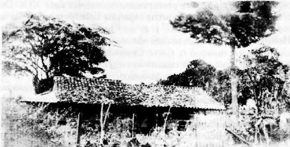 Lisímaco Chavarría – Guías Costa Rica